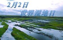 国际湿地日