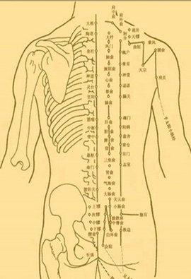 一是人体_人体穴位图_360百科