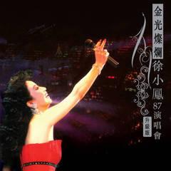 金光灿烂徐小凤87演唱会(升级版)
