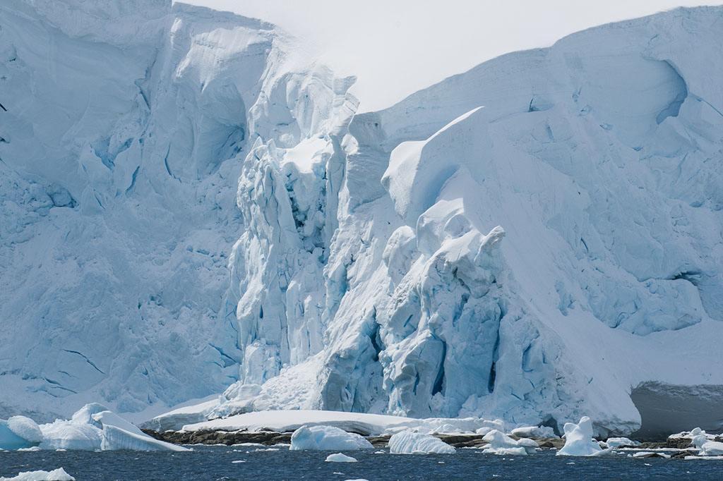 南极手绘卡通画贴图