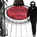 searching for sugar man (original motion picture soundtrack)(寻找小糖人)