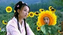 相思泪 电视剧<花姑子>片尾曲 无字幕版