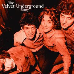 the velvet underground story 2cd set(chunky repackaged)