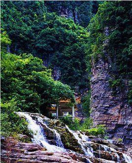 广东封开黑石顶省级自然保护区