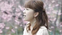 Love Letter ~桜~