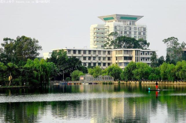 福建农林大学林学院